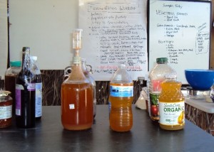 From Juice to Vinegar - websize